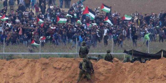 Gaza-afgana-1